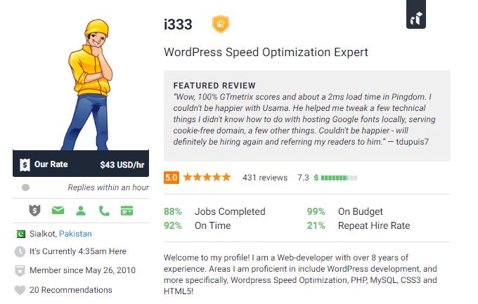 Freelancer WordPress Speed Optimization Expert