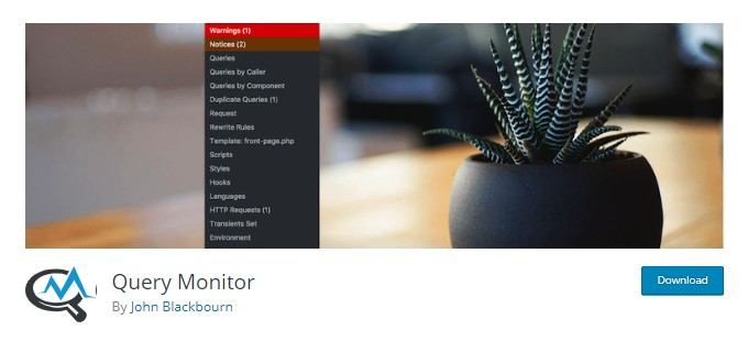 Query Monitor Plugin