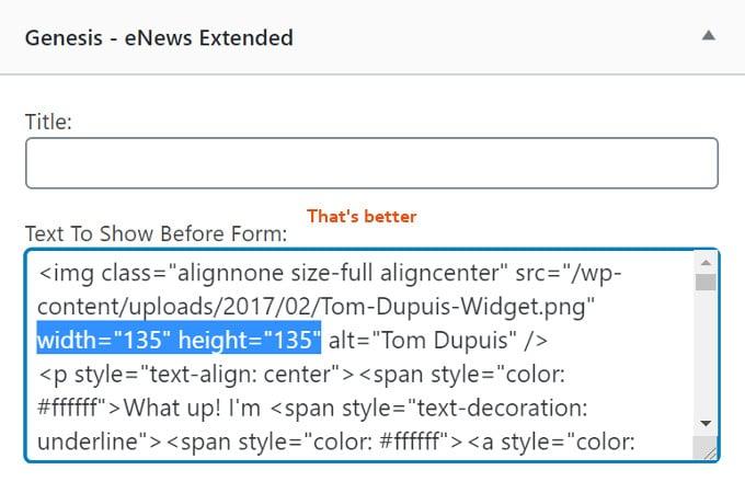 Specify-Image-Dimensions-WordPress