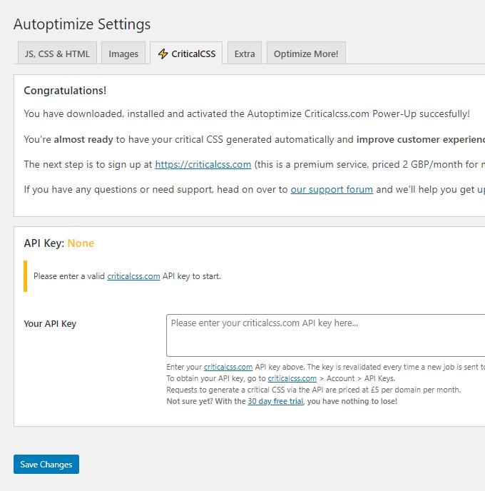 Autoptimize Critical CSS Settings
