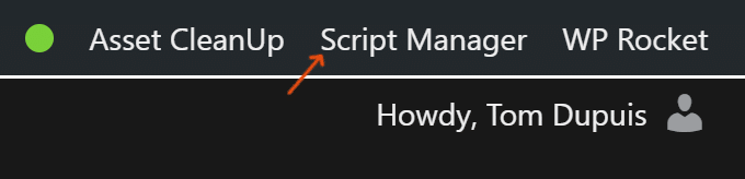 Script Manager Tab