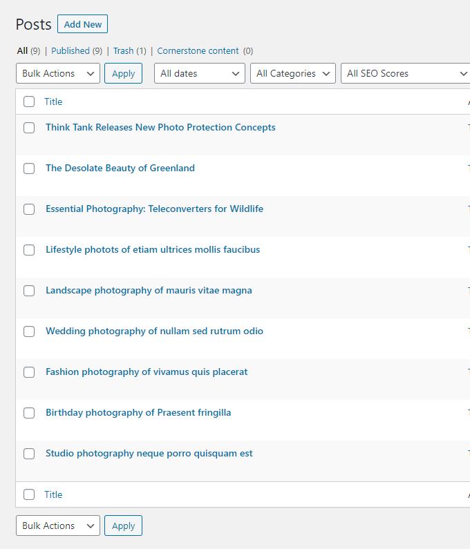 Photography-Blog-Posts
