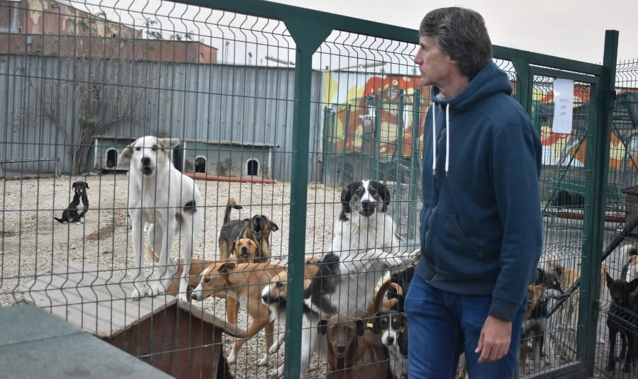 WPX-Owner-With-Dogs