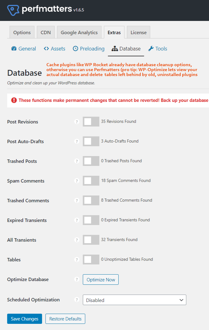 Perfmatters-Database-Settings