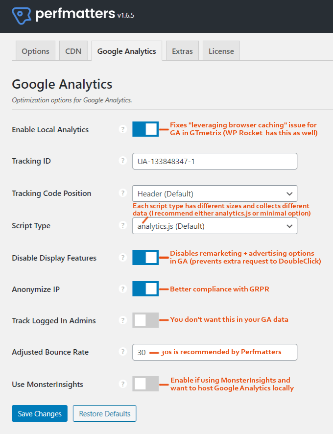 Perfmatters-Google-Analytics-Settings