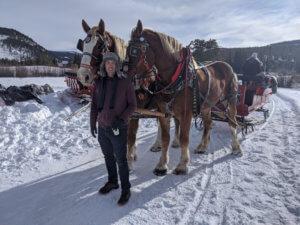 Horse Sleigh Ride in Breckenridge, Colorado