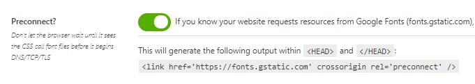 Preconnect Google Fonts - Asset CleanUp
